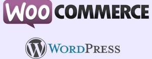 woocommerce ecommerce websites based on wordpress