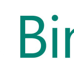 Bing Ads Ecommerce Conversion Tracking (Revenue Reporting) for Magento